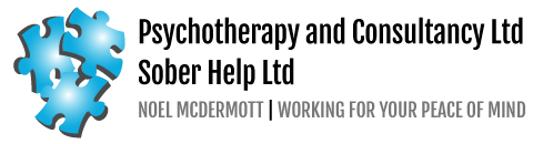 Noel McDermott Logo
