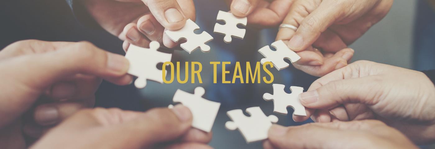mental health our teams